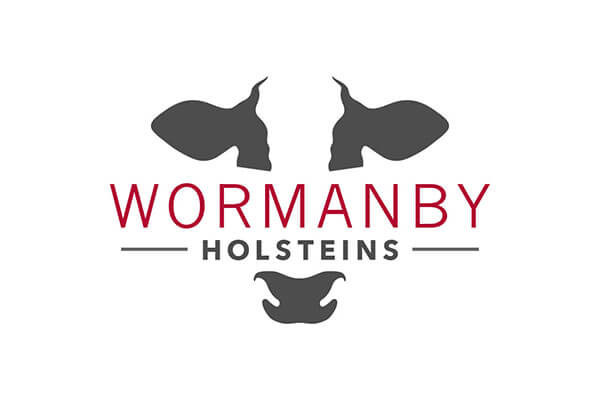 Logo design for Wormanby Holstein in Carlisle